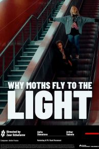 Why Moths Fly to the Light? (2020)