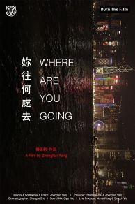 Where Are You Going (2016)